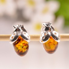 Beautiful Amber Earrings Ladybird
