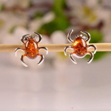 Cute Amber Earrings Beetle